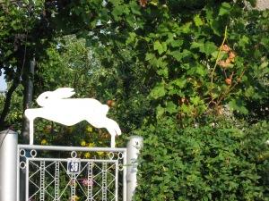 Белият заек