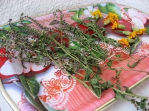 Разни билки